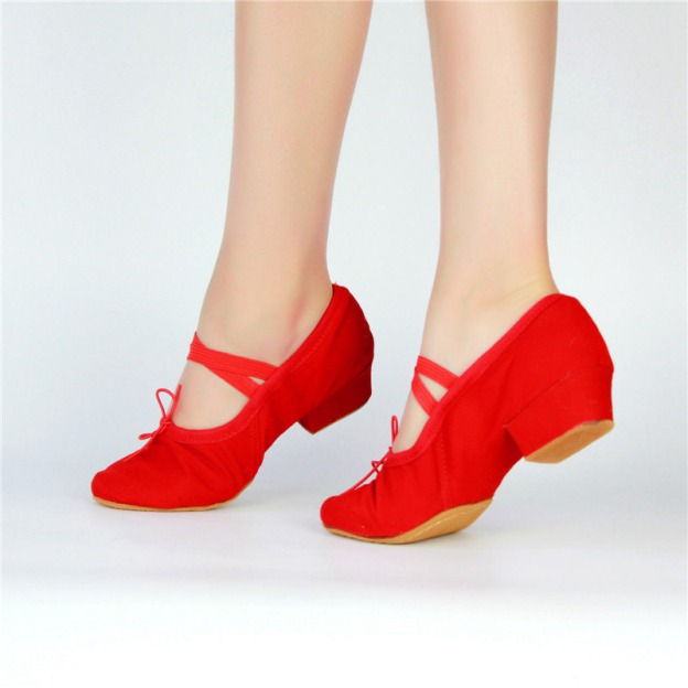 Close Toe Chunky Heel Canvas Dance Shoes