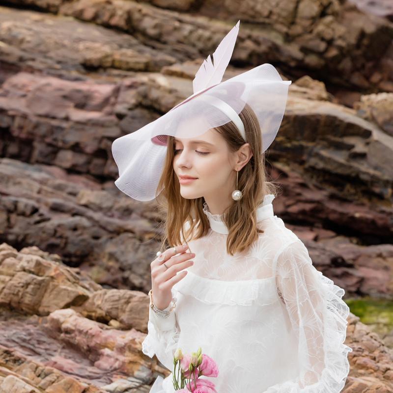 Ladies' Nice/Glamourous Pp Fascinators/Tea Party Hats With Feather